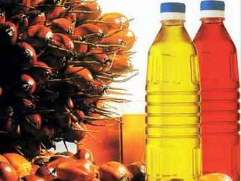 Sunflower Oil Palm Oil Olive oil Rapeseed oil Peanut Oil Cottonseed Oil and others